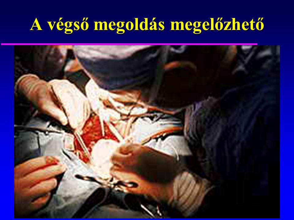 A kardiovaszkuláris kontinuum blokkolható.