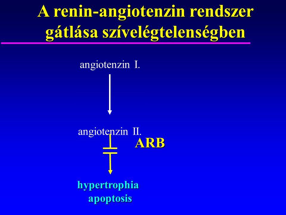 A renin-angiotenzin rendszer gátlása szívelégtelenségben angiotenzin I. angiotenzin II.hypertrophiaapoptosis ARB