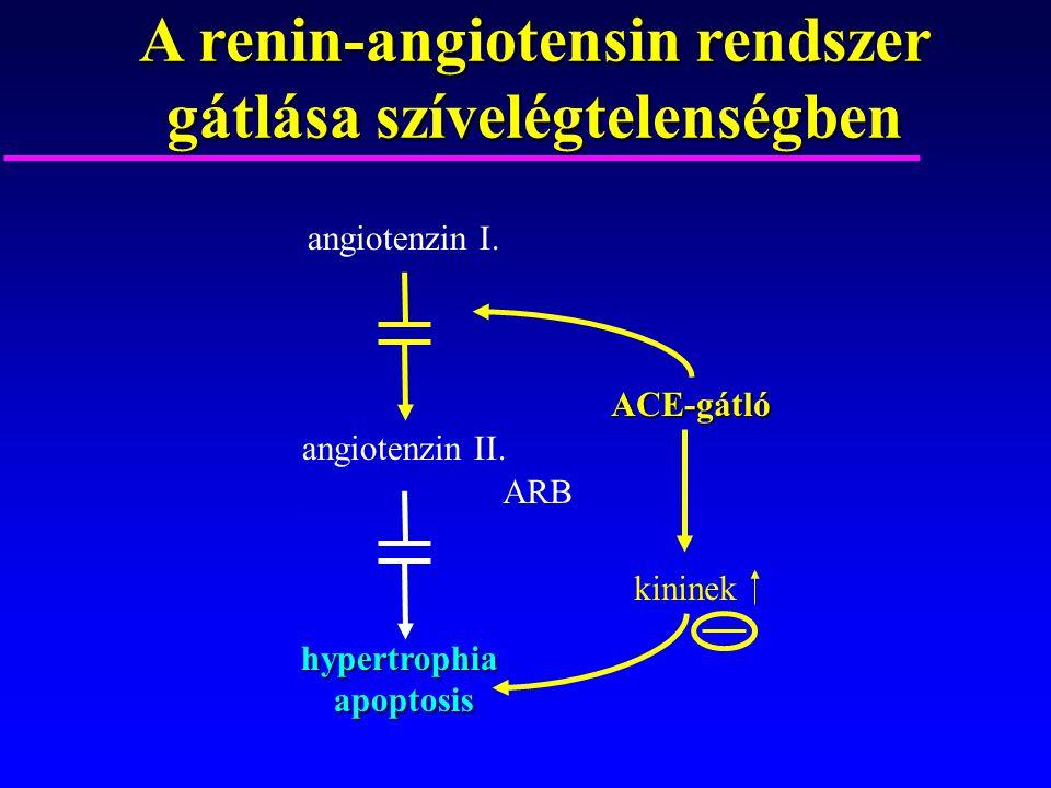 A renin-angiotensin rendszer gátlása szívelégtelenségben ACE-gátló kininek angiotenzin I. angiotenzin II.hypertrophiaapoptosis ARB