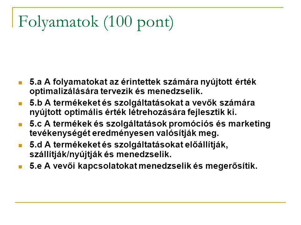 Vevői elégedettség (150 pont) Munkatársakkal kapcsolatos eredmények (100 pont) Társadalmi eredmények (100 pont) Érzékeléseken és észleléseken alapuló vélemények Teljesítménymutatók