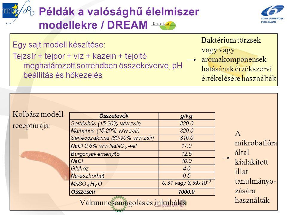 Példák a valósághű élelmiszer modellekre / DREAM Egy sajt modell készítése: Tejzsír + tejpor + víz + kazein + tejoltó meghatározott sorrendben összeke