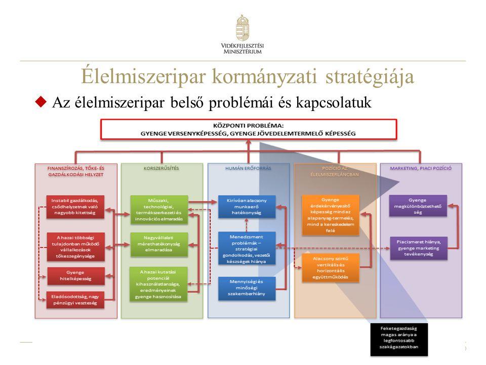 10 Élelmiszeripar kormányzati stratégiája  Az élelmiszeripar belső problémái és kapcsolatuk