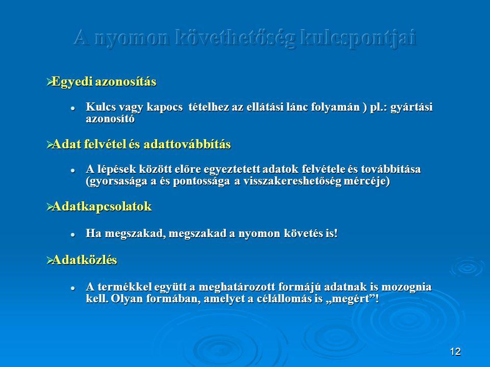 12  Egyedi azonosítás Kulcs vagy kapocs tételhez az ellátási lánc folyamán ) pl.: gyártási azonosító Kulcs vagy kapocs tételhez az ellátási lánc foly