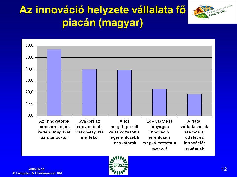 2006.06.14 © Campden & Chorleywood Kht 12 Az innováció helyzete vállalata fő piacán (magyar)