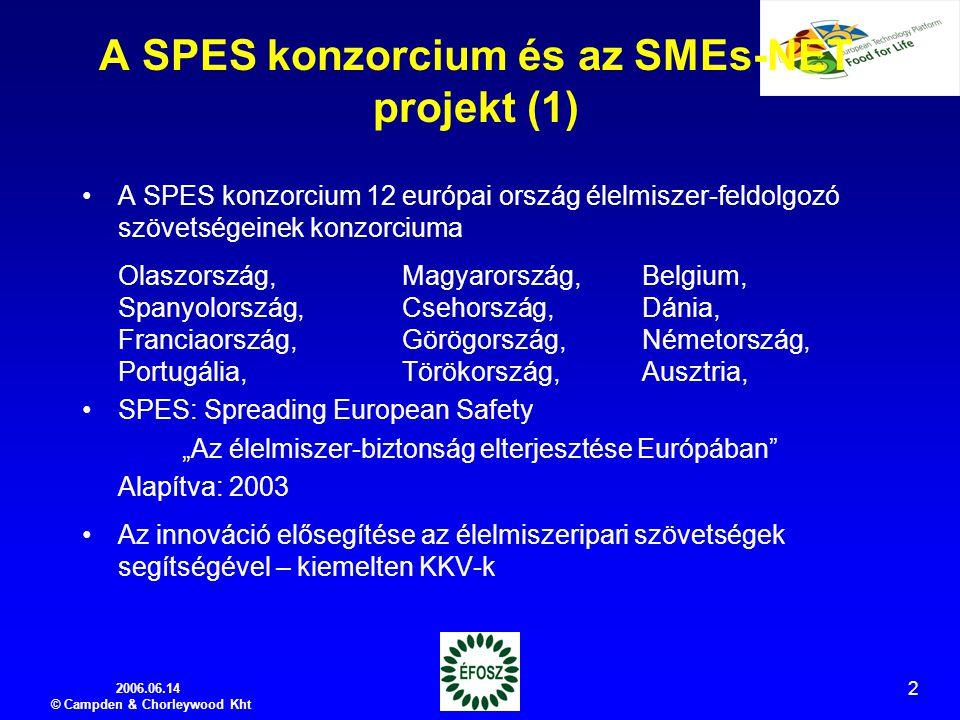 """2006.06.14 © Campden & Chorleywood Kht 2 A SPES konzorcium és az SMEs-NET projekt (1) A SPES konzorcium 12 európai ország élelmiszer-feldolgozó szövetségeinek konzorciuma Olaszország,Magyarország,Belgium, Spanyolország,Csehország,Dánia, Franciaország,Görögország,Németország, Portugália,Törökország,Ausztria, SPES: Spreading European Safety """"Az élelmiszer-biztonság elterjesztése Európában Alapítva: 2003 Az innováció elősegítése az élelmiszeripari szövetségek segítségével – kiemelten KKV-k"""