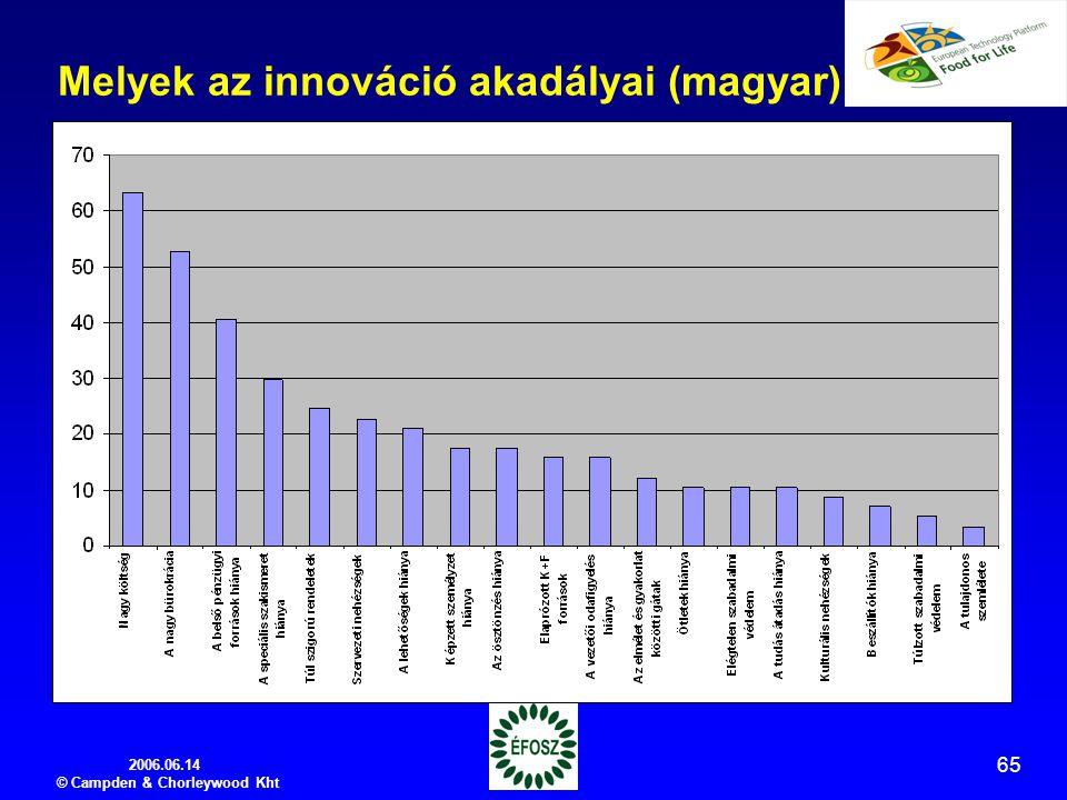 2006.06.14 © Campden & Chorleywood Kht 65 Melyek az innováció akadályai (magyar)