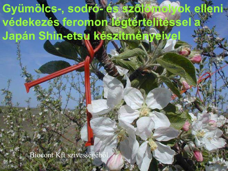 Gyümölcs-, sodró- és szőlőmolyok elleni védekezés feromon légtértelítéssel a Japán Shin-etsu készítményeivel Biocont Kft szívességéből