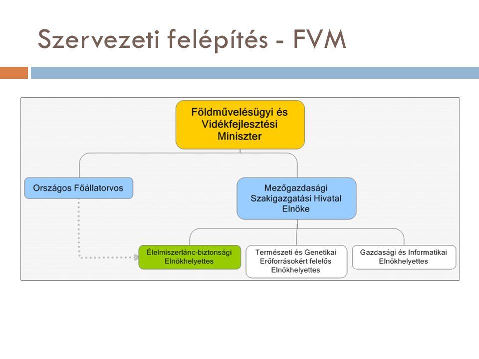 Szervezeti felépítés - FVM