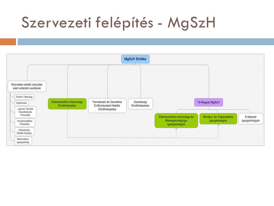 Szervezeti felépítés - MgSzH