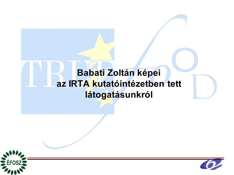 Babati Zoltán képei az IRTA kutatóintézetben tett látogatásunkról