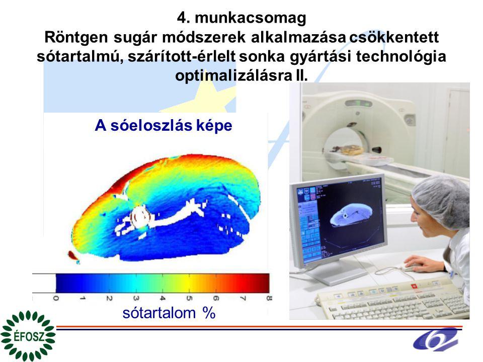 4. munkacsomag Röntgen sugár módszerek alkalmazása csökkentett sótartalmú, szárított-érlelt sonka gyártási technológia optimalizálásra II. A sóeloszlá