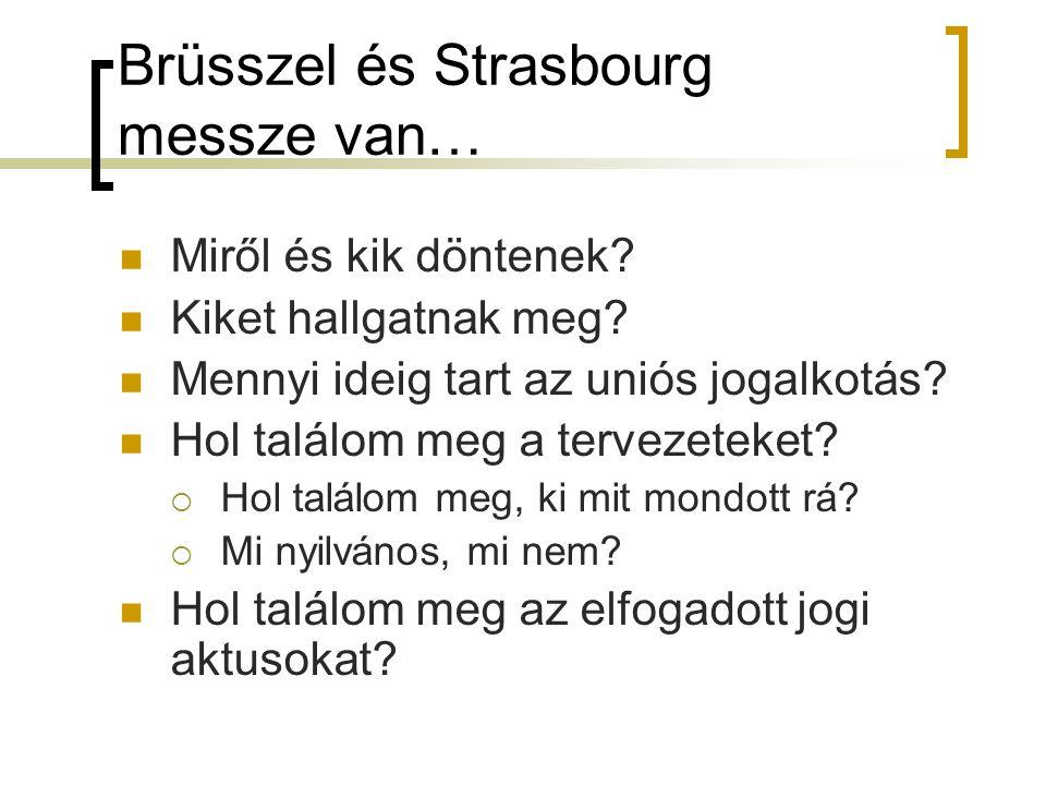 Brüsszel és Strasbourg messze van… Miről és kik döntenek.