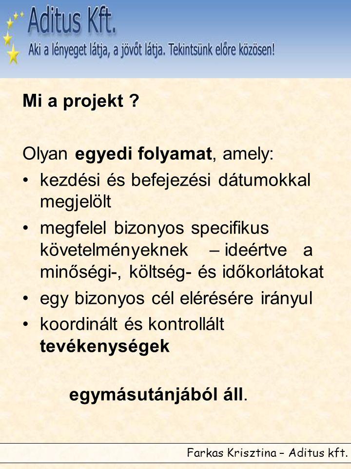 Farkas Krisztina – Aditus kft. Mi a projekt .