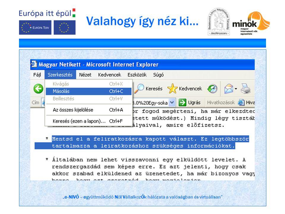 """""""e-NIVÓ – együttműködõ NõI VállalkozÓk hálózata a valóságban és virtuálisan Valahogy így néz ki…"""