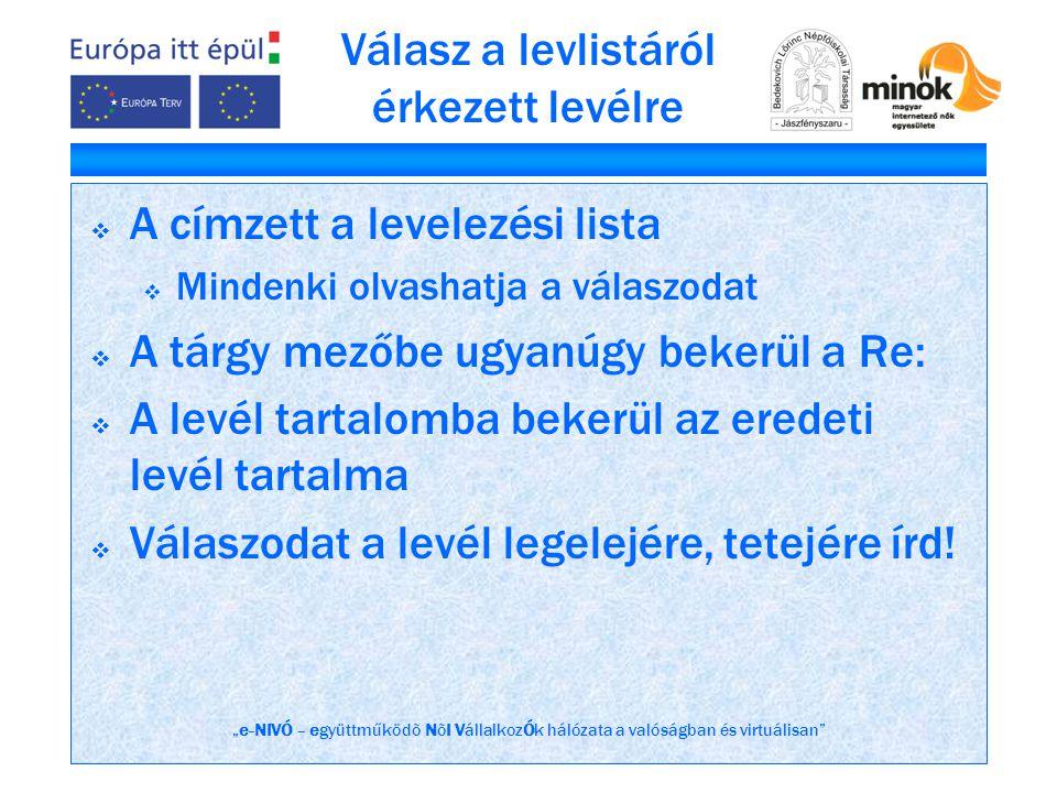 """""""e-NIVÓ – együttműködõ NõI VállalkozÓk hálózata a valóságban és virtuálisan"""" Válasz a levlistáról érkezett levélre  A címzett a levelezési lista  Mi"""