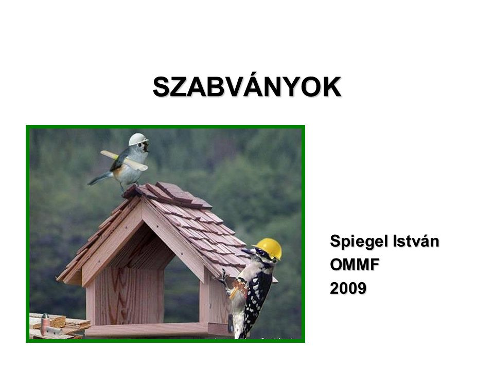 SZABVÁNYOK Spiegel István OMMF2009