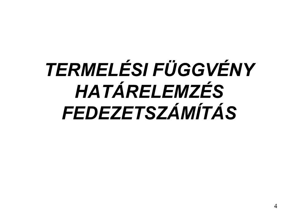 4 TERMELÉSI FÜGGVÉNY HATÁRELEMZÉS FEDEZETSZÁMÍTÁS