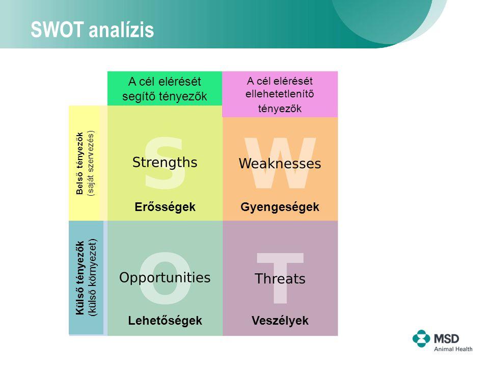 3 SWOT analízis A cél elérését segítő tényezők A cél elérését ellehetetlenítő tényezők LehetőségekVeszélyek ErősségekGyengeségek Belső tényezők (saját szervezés) Külső tényezők (külső környezet)