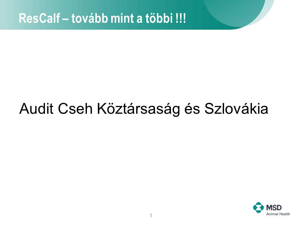 5 ResCalf – tovább mint a többi !!! Audit Cseh Köztársaság és Szlovákia
