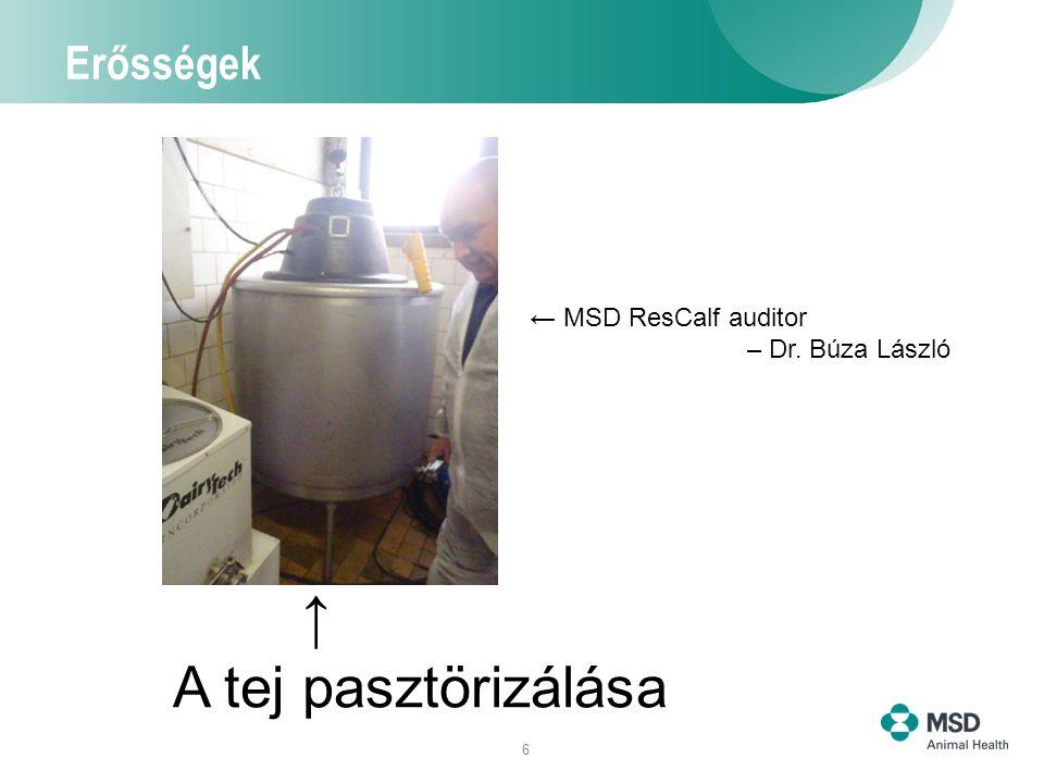6 Erősségek A tej pasztörizálása → ← MSD ResCalf auditor – Dr. Búza László
