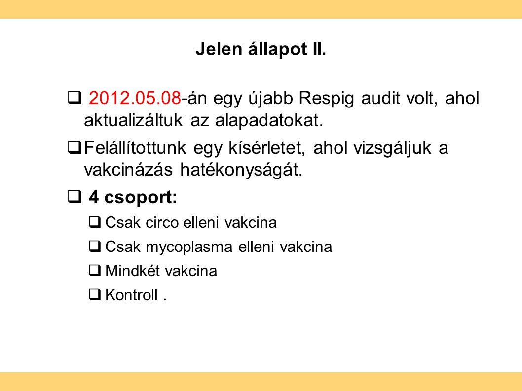 Jelen állapot II.  2012.05.08-án egy újabb Respig audit volt, ahol aktualizáltuk az alapadatokat.