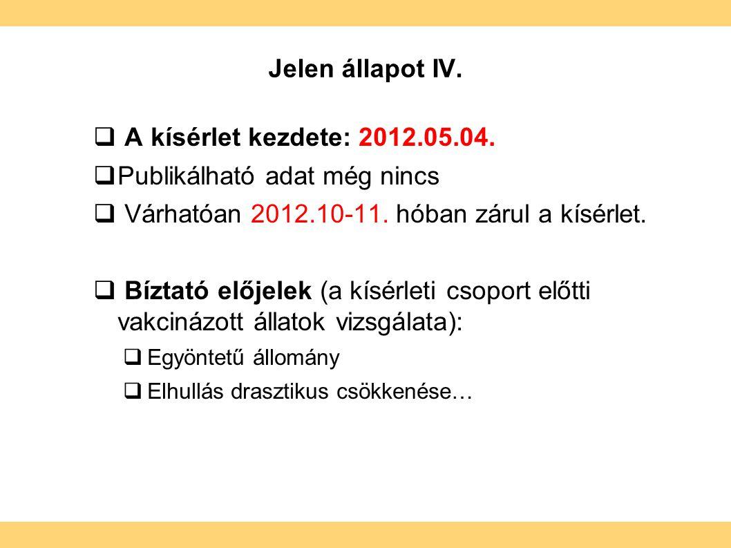 Jelen állapot IV.  A kísérlet kezdete: 2012.05.04.