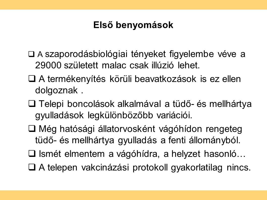 Első benyomások  A szaporodásbiológiai tényeket figyelembe véve a 29000 született malac csak illúzió lehet.