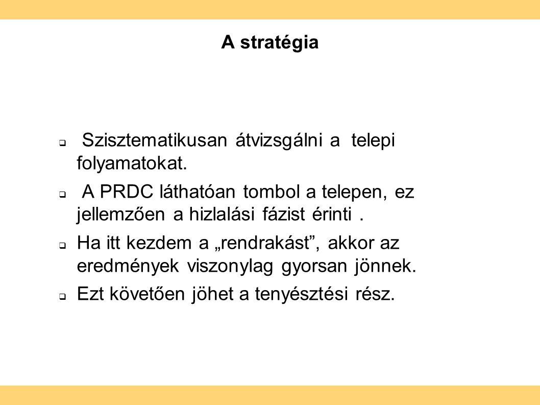 A stratégia  Szisztematikusan átvizsgálni a telepi folyamatokat.