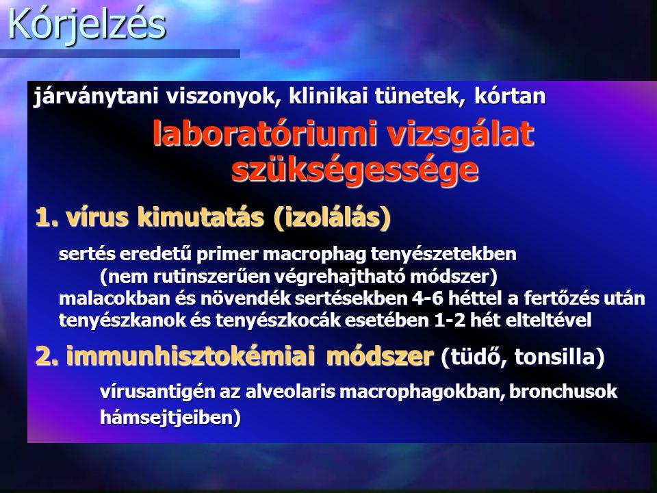 Kórjelzés járványtani viszonyok, klinikai tünetek, kórtan laboratóriumi vizsgálat szükségessége 1.