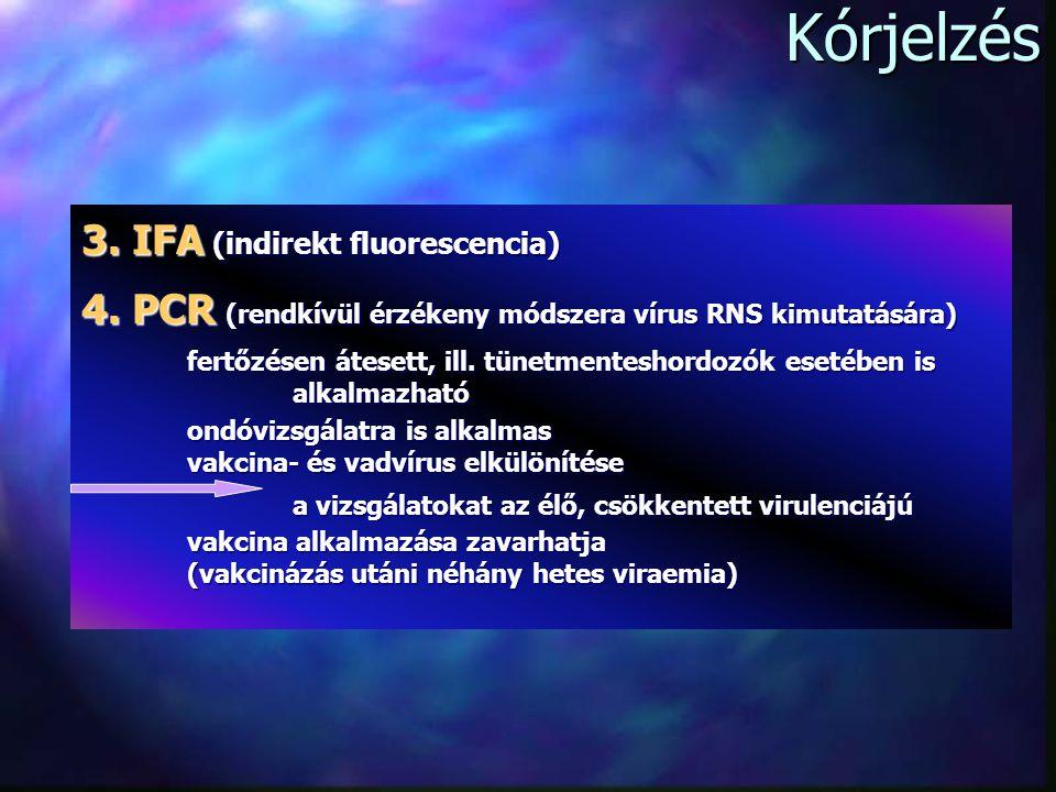 Kórjelzés 3.IFA (indirekt fluorescencia) 4.