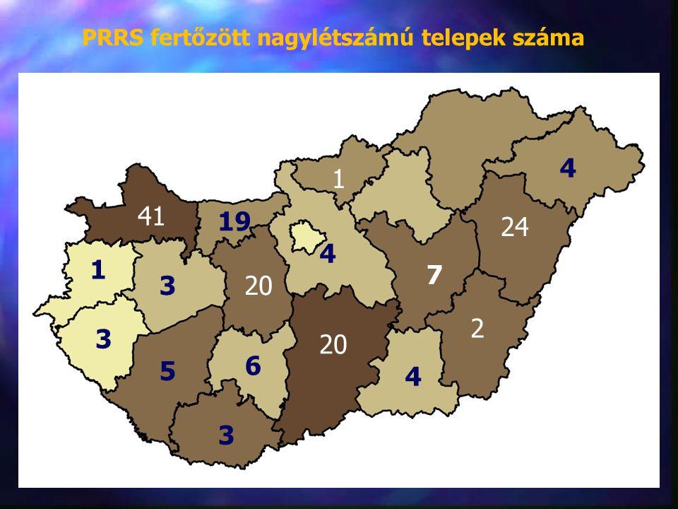 41 PRRS fertőzött nagylétszámú telepek száma 19 4 1 4 24 7 2 4 20 1 3 3 5 3 6