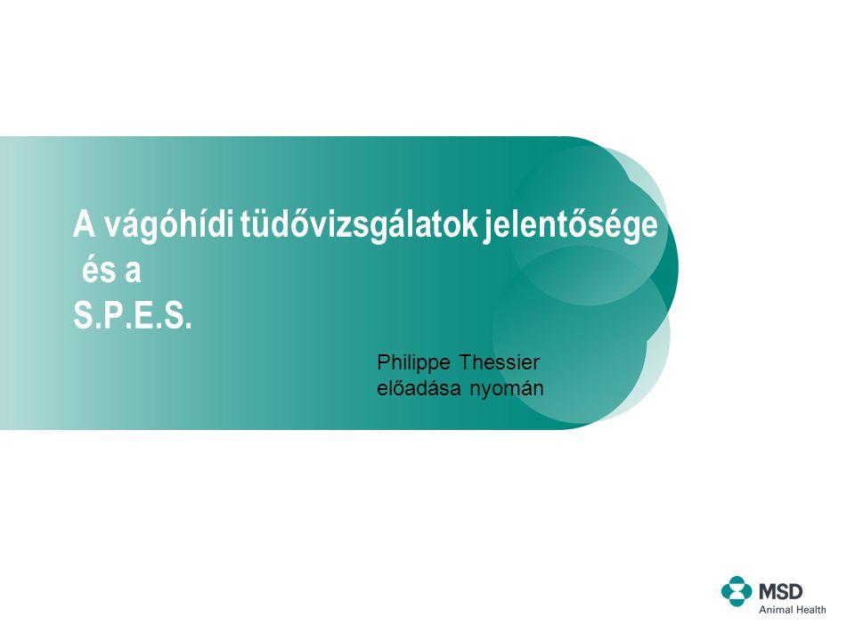 A vágóhídi tüdővizsgálatok jelentősége és a S.P.E.S. Philippe Thessier előadása nyomán