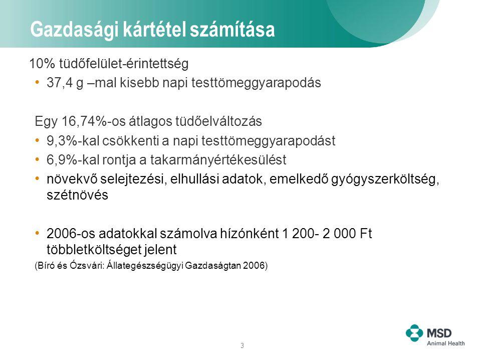 3 Gazdasági kártétel számítása 10% tüdőfelület-érintettség 37,4 g –mal kisebb napi testtömeggyarapodás Egy 16,74%-os átlagos tüdőelváltozás 9,3%-kal c