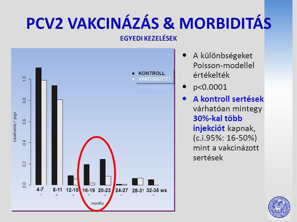 A különbségeket Poisson-modellel értékelték p<0.0001 A kontroll sertések várhatóan mintegy 30%-kal több injekciót kapnak, (c.i.95%: 16-50%) mint a vakcinázott sertések 4-7 8-11 12-15 16-19 20-2324-27 28-31 32-35 ws
