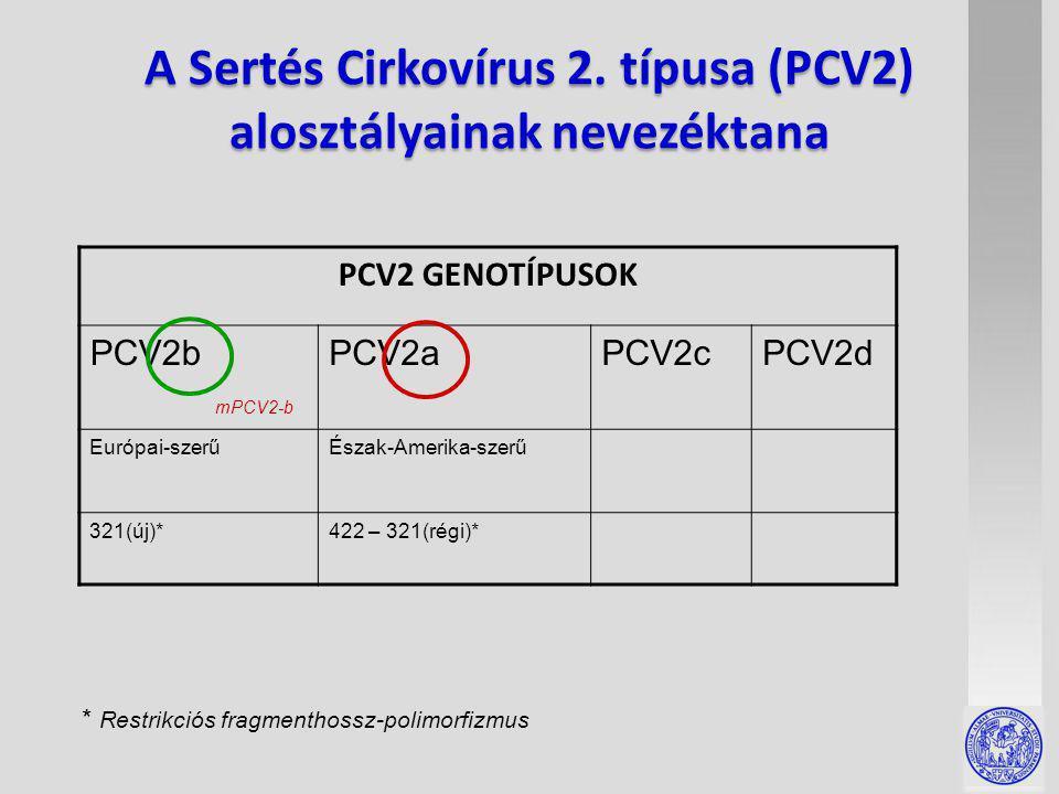 A Sertés Cirkovírus 2.
