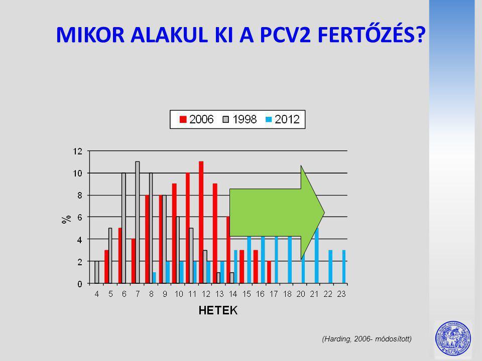 MIKOR ALAKUL KI A PCV2 FERTŐZÉS (Harding, 2006- módosított)