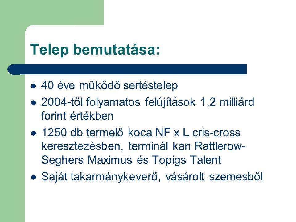 Telep bemutatása: 40 éve működő sertéstelep 2004-től folyamatos felújítások 1,2 milliárd forint értékben 1250 db termelő koca NF x L cris-cross keresz