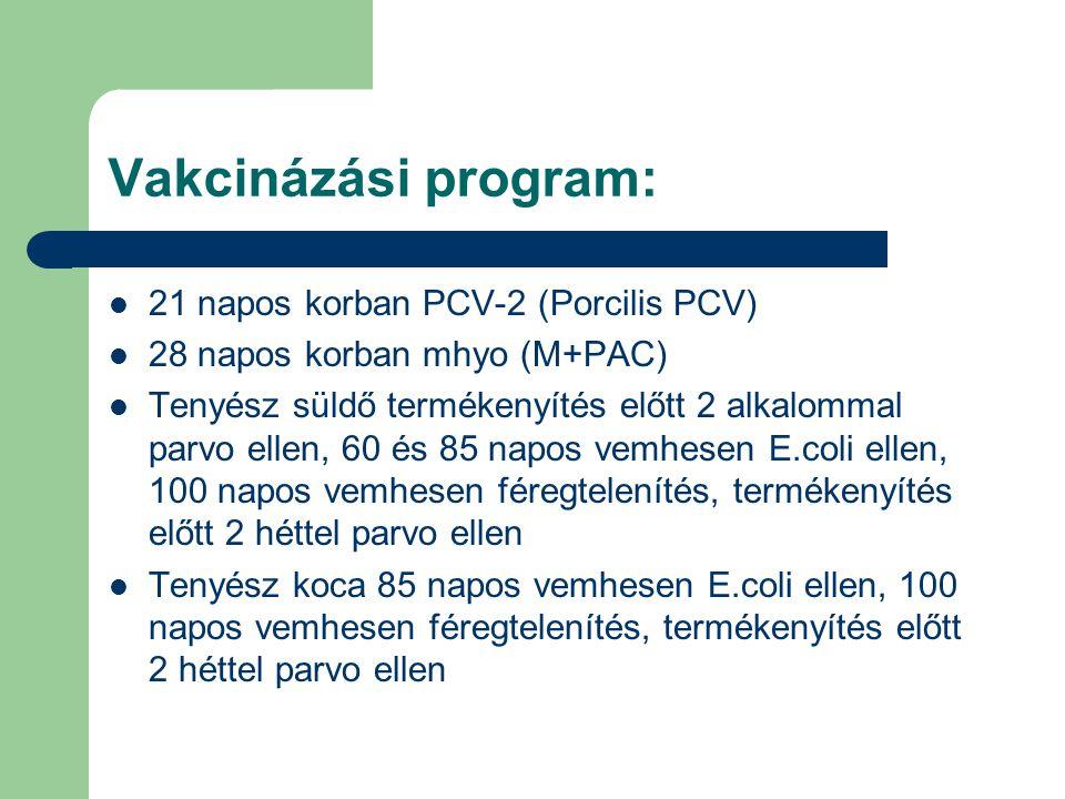 Vakcinázási program: 21 napos korban PCV-2 (Porcilis PCV) 28 napos korban mhyo (M+PAC) Tenyész süldő termékenyítés előtt 2 alkalommal parvo ellen, 60