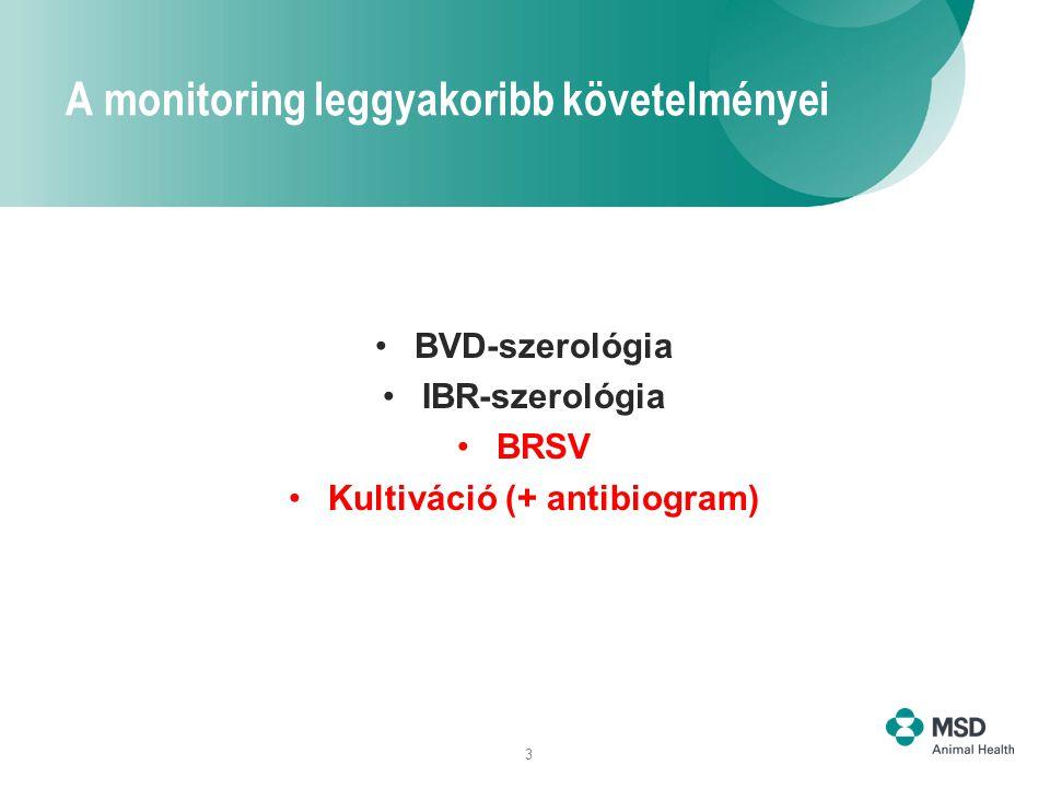 3 A monitoring leggyakoribb követelményei BVD-szerológia IBR-szerológia BRSV Kultiváció (+ antibiogram)