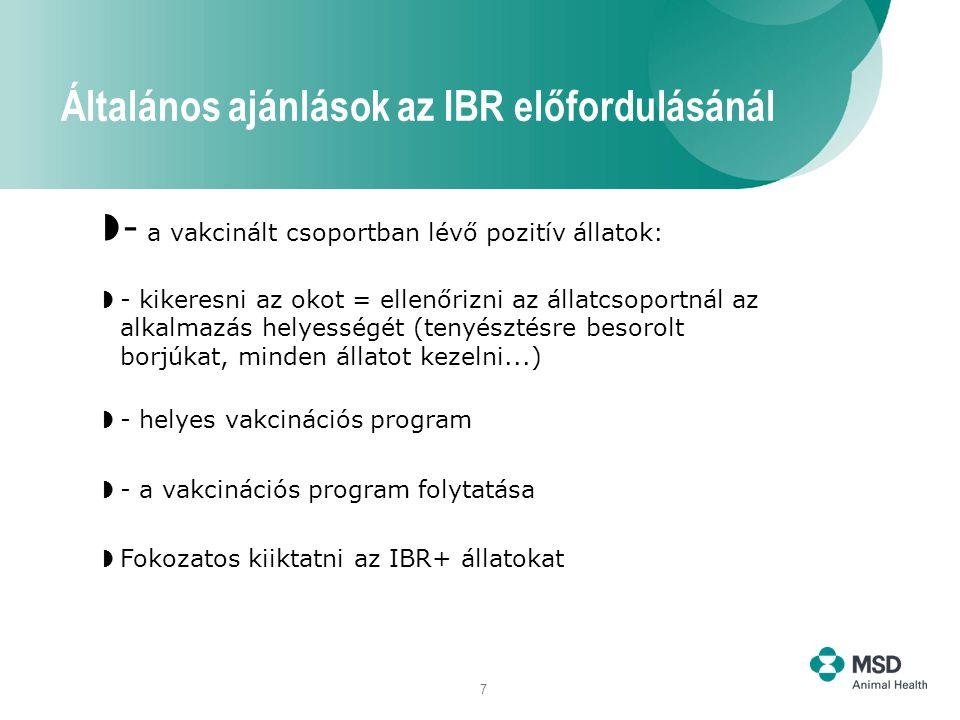 7  - a vakcinált csoportban lévő pozitív állatok:  - kikeresni az okot = ellenőrizni az állatcsoportnál az alkalmazás helyességét (tenyésztésre besorolt borjúkat, minden állatot kezelni...)  - helyes vakcinációs program  - a vakcinációs program folytatása  Fokozatos kiiktatni az IBR+ állatokat Általános ajánlások az IBR előfordulásánál