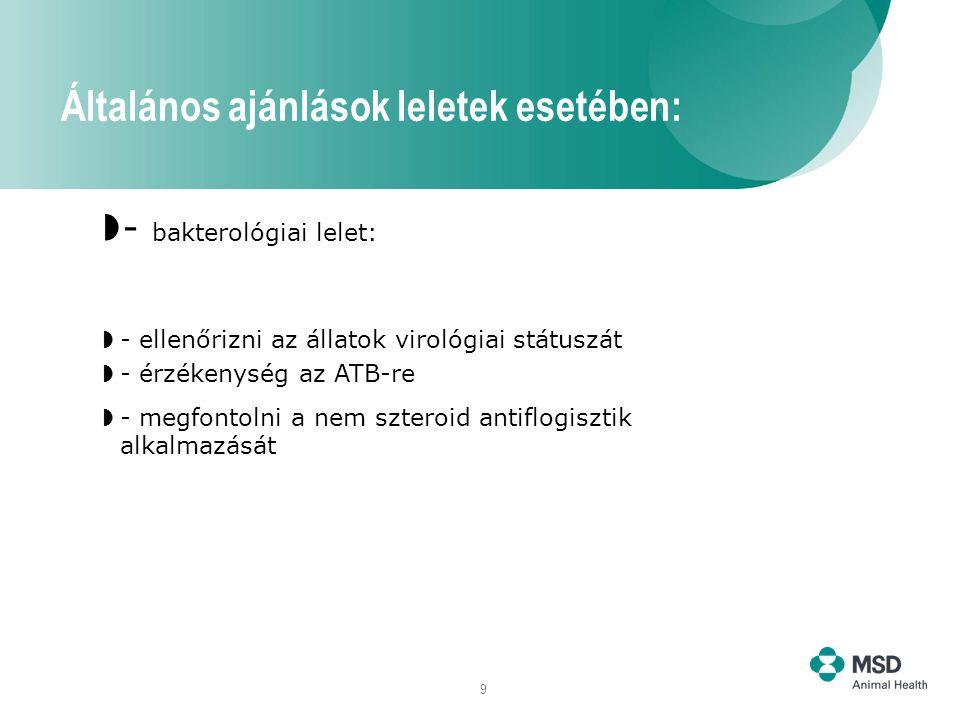 9  - bakterológiai lelet:  - ellenőrizni az állatok virológiai státuszát  - érzékenység az ATB-re  - megfontolni a nem szteroid antiflogisztik alkalmazását Általános ajánlások leletek esetében: