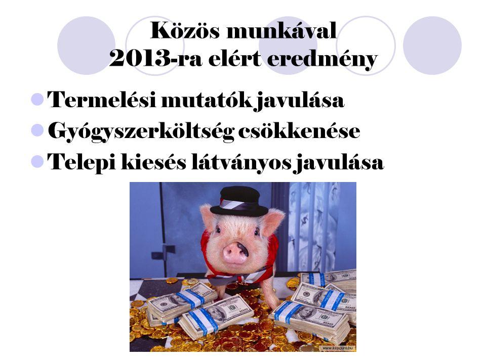 Közös munkával 2013-ra elért eredmény Termelési mutatók javulása Gyógyszerköltség csökkenése Telepi kiesés látványos javulása
