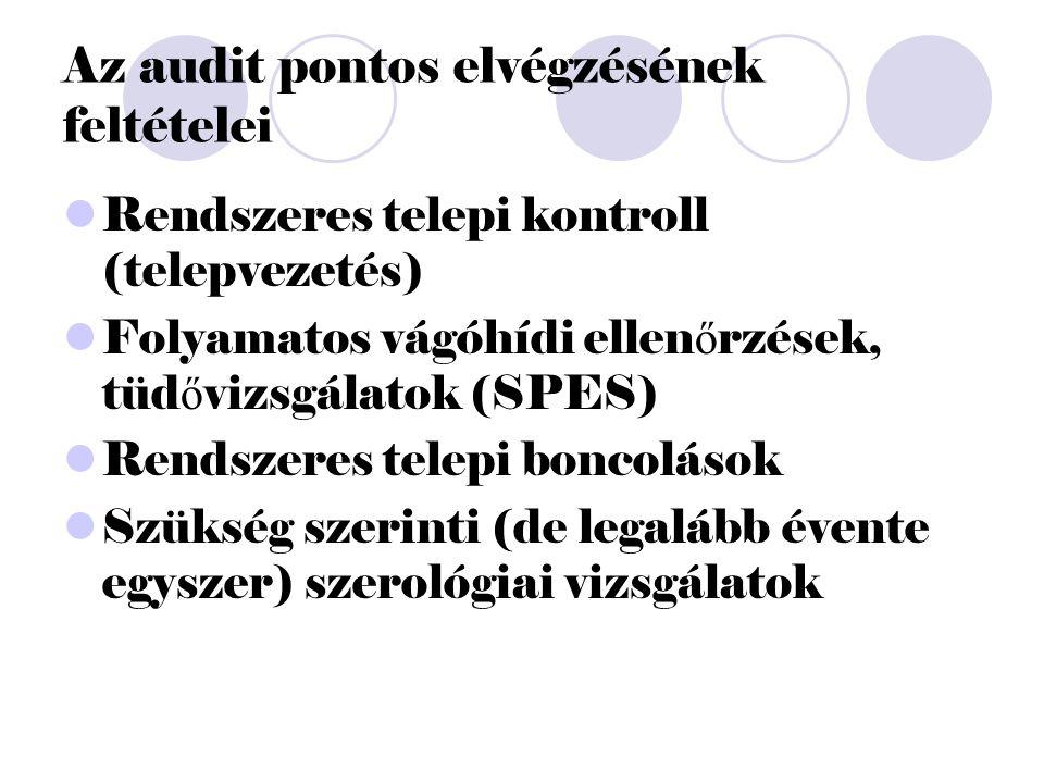 Az audit pontos elvégzésének feltételei Rendszeres telepi kontroll (telepvezetés) Folyamatos vágóhídi ellen ő rzések, tüd ő vizsgálatok (SPES) Rendszeres telepi boncolások Szükség szerinti (de legalább évente egyszer) szerológiai vizsgálatok