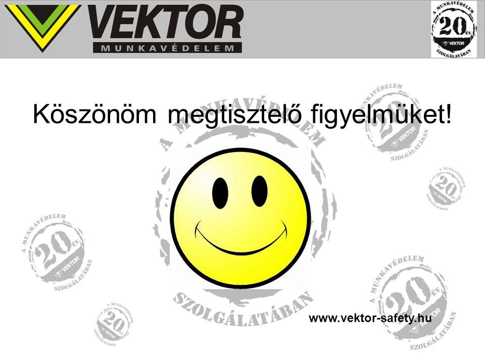 Köszönöm megtisztelő figyelmüket! www.vektor-safety.hu