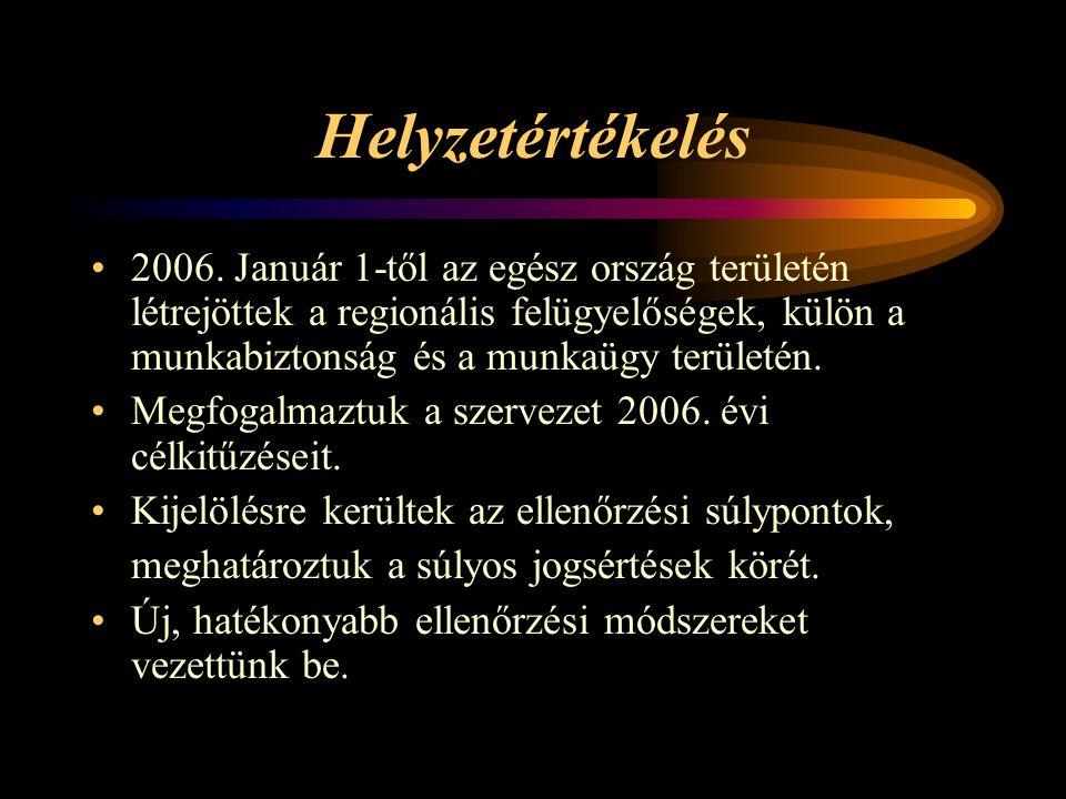 Helyzetértékelés 2006.
