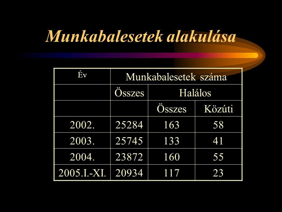 Munkabalesetek alakulása Év Munkabalesetek száma ÖsszesHalálos ÖsszesKözúti 2002.2528416358 2003.2574513341 2004.2387216055 2005.I.-XI.2093411723