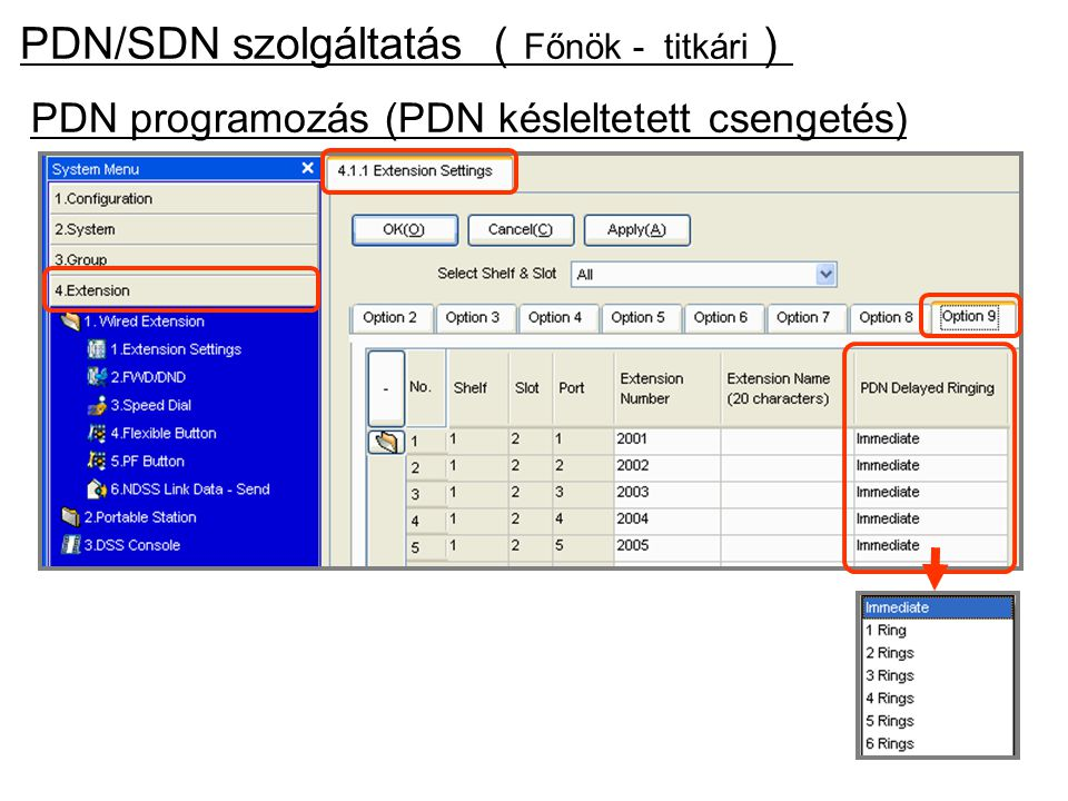 PDN programozás (PDN késleltetett csengetés) PDN/SDN szolgáltatás ( Főnök - titkári )