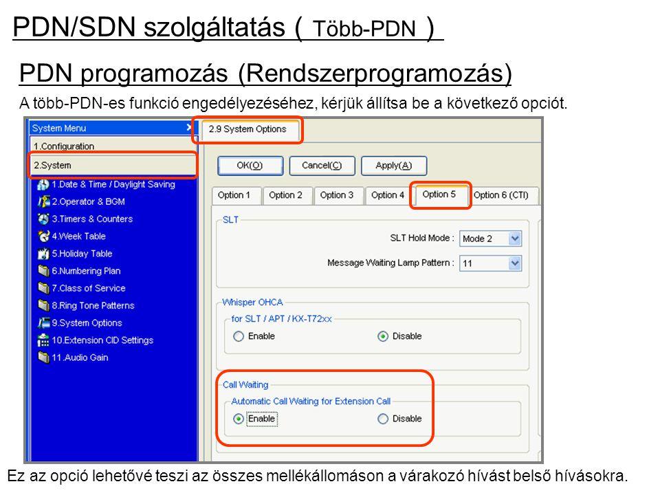 Ez az opció lehetővé teszi az összes mellékállomáson a várakozó hívást belső hívásokra. PDN/SDN szolgáltatás ( Több-PDN ) PDN programozás (Rendszerpro