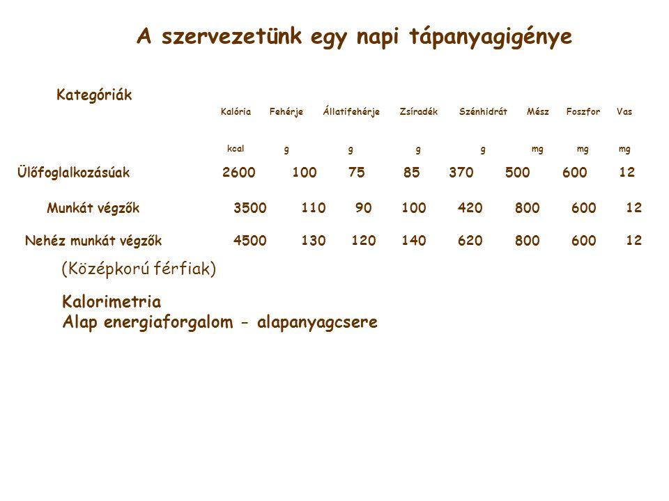 A szervezetünk egy napi tápanyagigénye KalóriaFehérjeÁllatifehérjeZsíradékSzénhidrátMészFoszforVas kcalggggmg Ülőfoglalkozásúak260010075 8537050060012 Munkát végzők35001109010042080060012 Nehéz munkát végzők450013012014062080060012 Kalorimetria Alap energiaforgalom - alapanyagcsere Kategóriák (Középkorú férfiak)