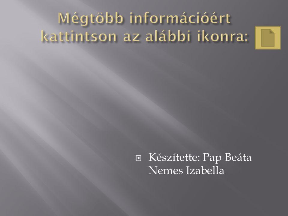  Készítette: Pap Beáta Nemes Izabella
